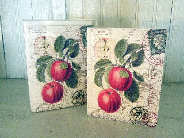 Botanical  Red Apple Print,  Pillow, Note Cards, Tea Towel, Digital Download - BELLAVINTAGEHOME