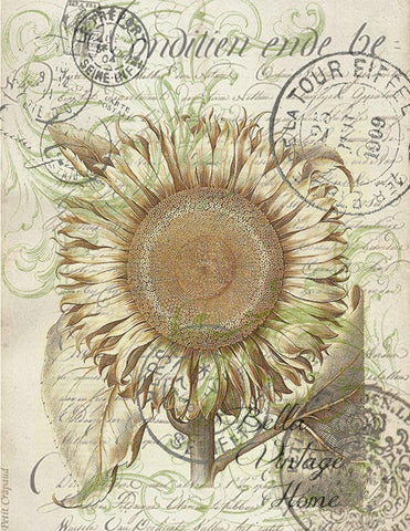 Sunflower Botanical Print,  Pillow, Note Cards, Tea Towel