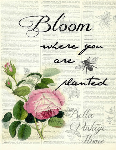 Botanical Bloom Rose Print, Pillow, Note Cards, Tea Towel