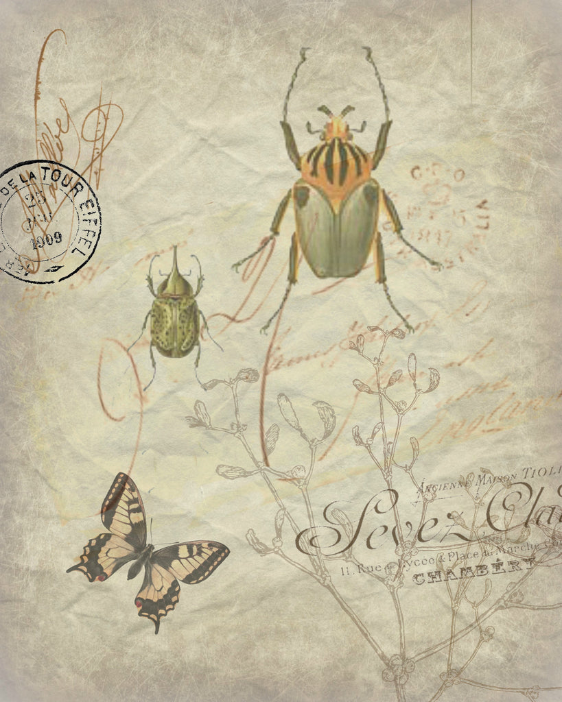 Botanical Beetle  Print, Pillow, Note Cards, Tea Towel, Digital Download - BELLAVINTAGEHOME