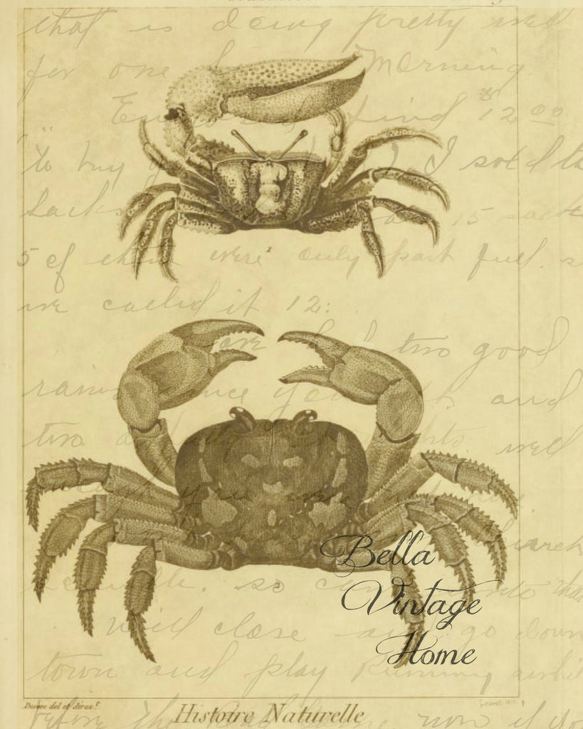 Crabs 2 Print,  Pillow, Note Cards, Tea Towel, Digital Download - BELLAVINTAGEHOME