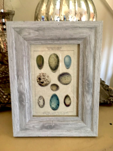 Grey Wash Frame with Print - BELLAVINTAGEHOME