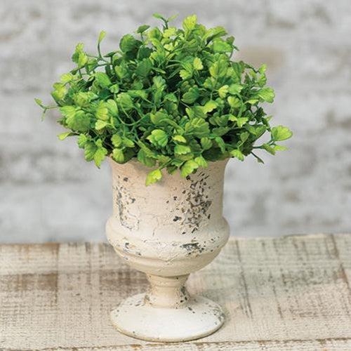 "a  Maidenhair Fern Half Sphere 6"" NEW! - BELLAVINTAGEHOME"