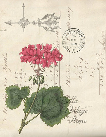Botanical  Geranium Print, Pillow, Note Cards, Tea Towel