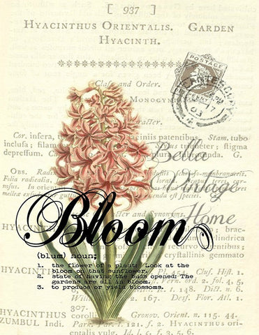 Botanical Bloom Hyacinth Print, Pillow, Note Cards, Tea Towel