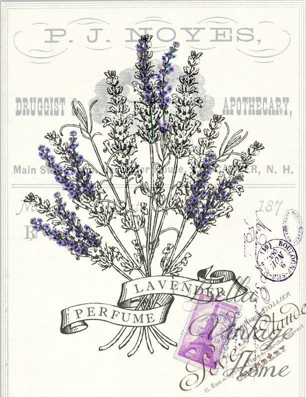 Botanical  Lavender Perfume Print,  Pillow, Note Cards