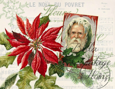 Vintage Art Collection Paper  Christmas Poinsettia Print,  Pillow, Note Cards, Tea Towel, Digital Download - BELLAVINTAGEHOME