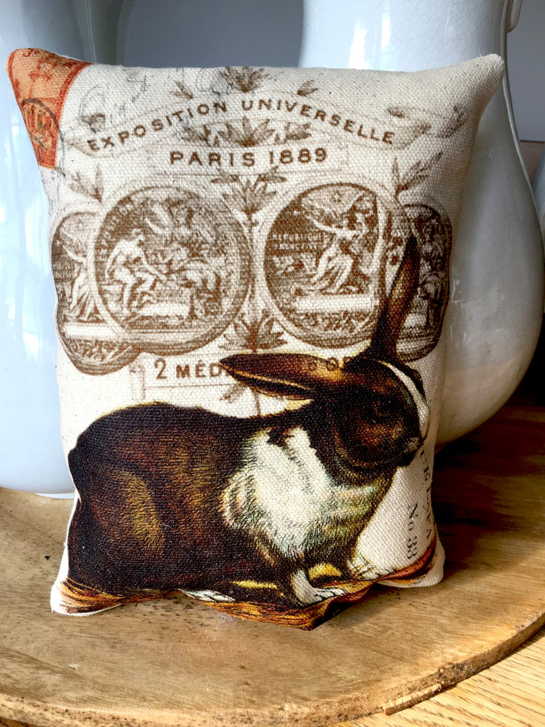 Rabbit with Carrot Accent Pillow - BELLAVINTAGEHOME