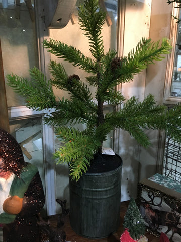 Farmhouse  Potted Pine Tree