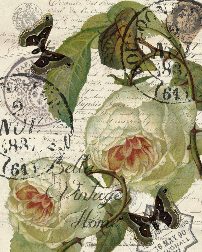 Botanical White Roses Print, Pillow, Note Cards, Tea Towel, Digital Download - BELLAVINTAGEHOME