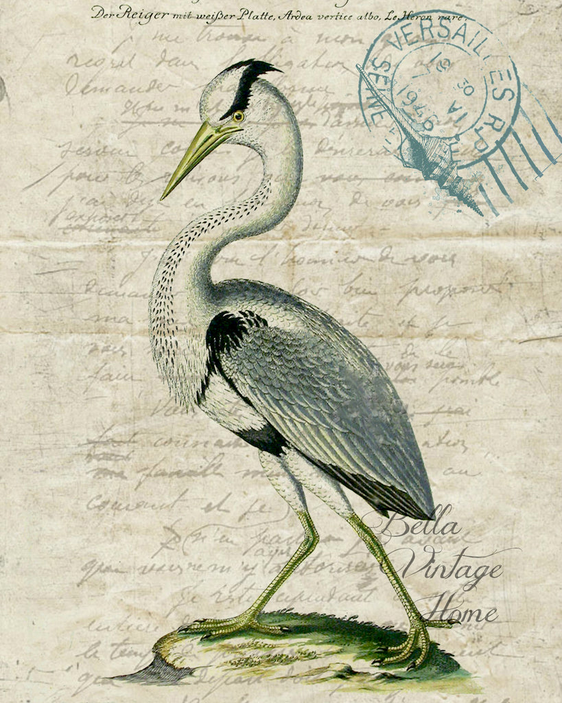 Botanical Stork I Print, Pillow,Note Cards, Tea Towel, Digital Download - BELLAVINTAGEHOME