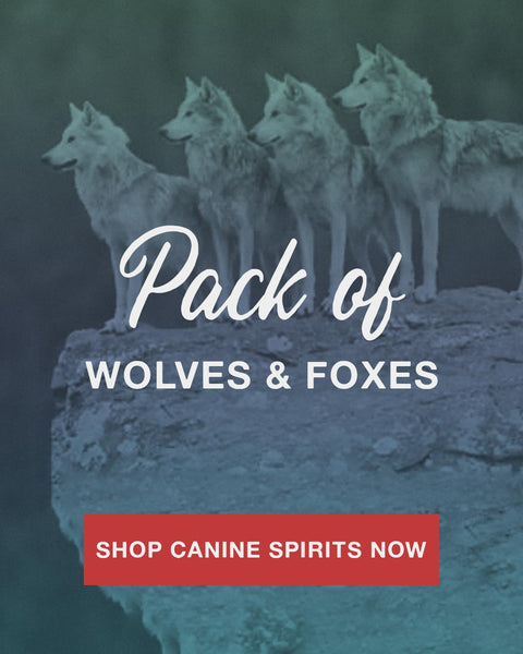 pack of wolves on rock