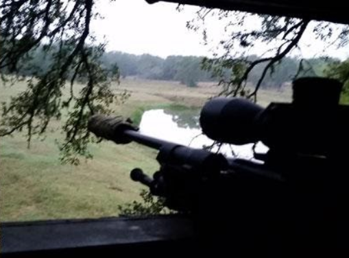 The Benefits of Suppressed Hunting