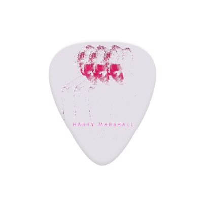 Echoes Guitar Picks