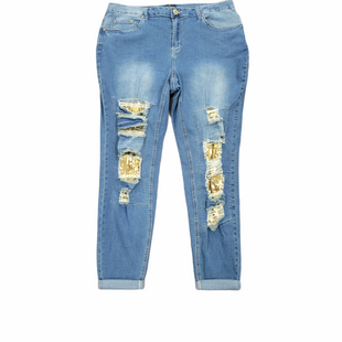 Primary Photo - BRAND: ASHLEY STEWART STYLE: JEANS COLOR: DENIM SIZE: 18 SKU: 196-196141-5116