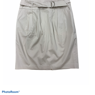 Primary Photo - BRAND: DALIA COLLECTION STYLE: SKIRT COLOR: KHAKI SIZE: 8 SKU: 196-19666-15479
