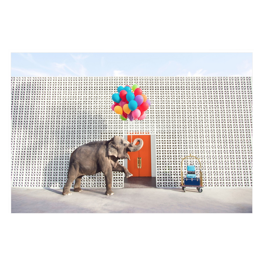GRAY MALIN ELEPHANT ARTWORK