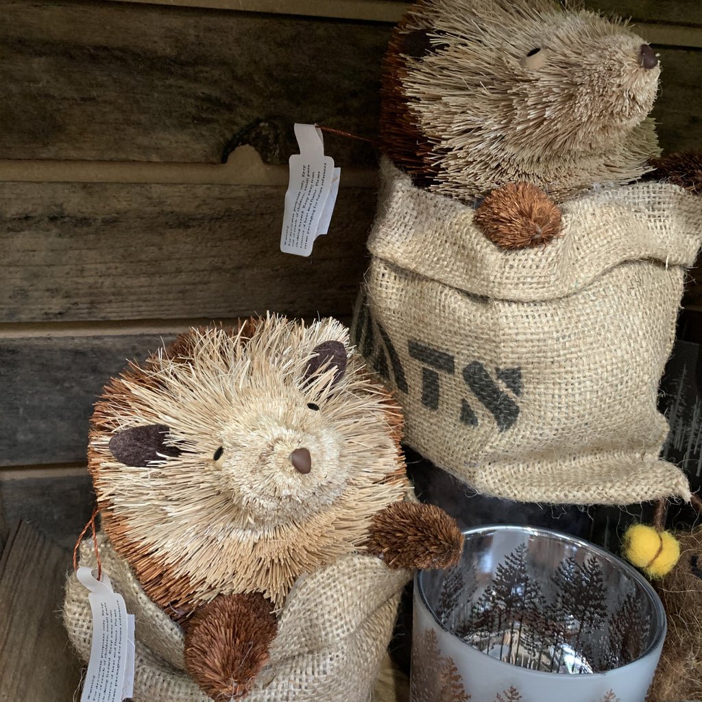 HEDGEHOG IN JUTE SACK