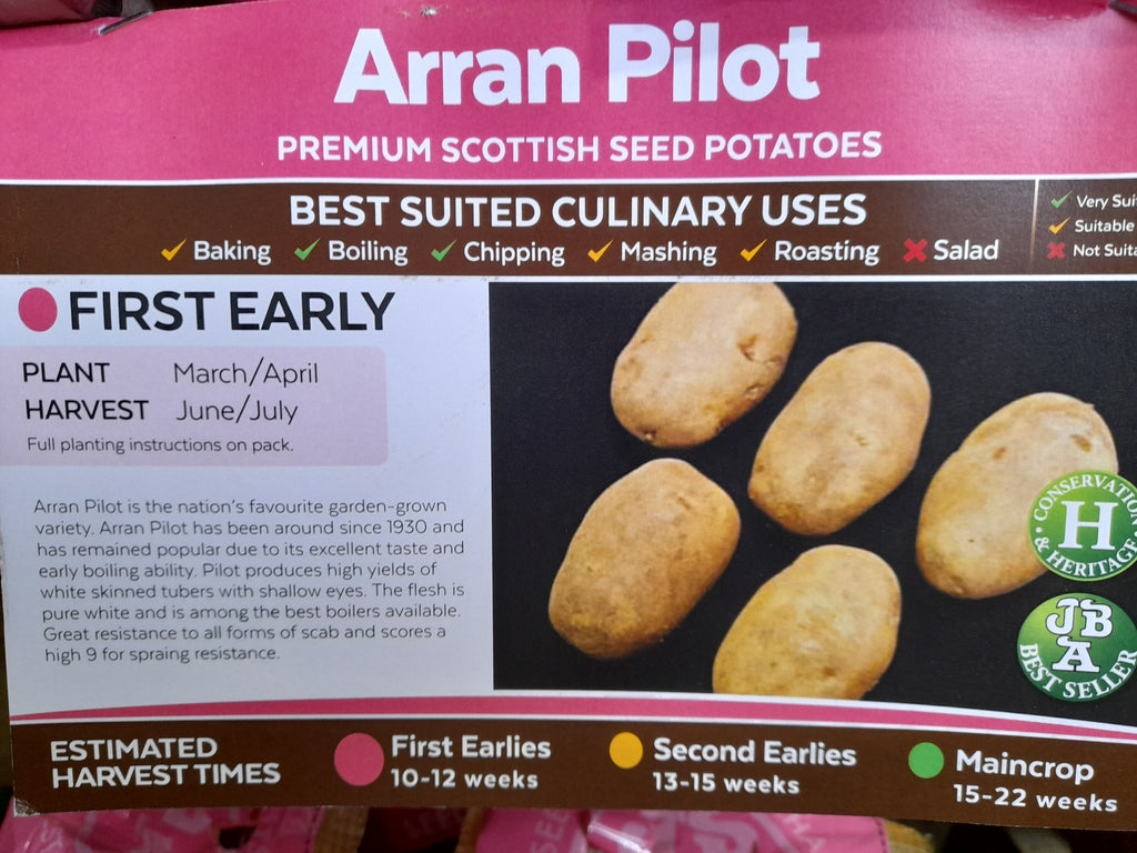 Arran Pilot Seed Potatoes