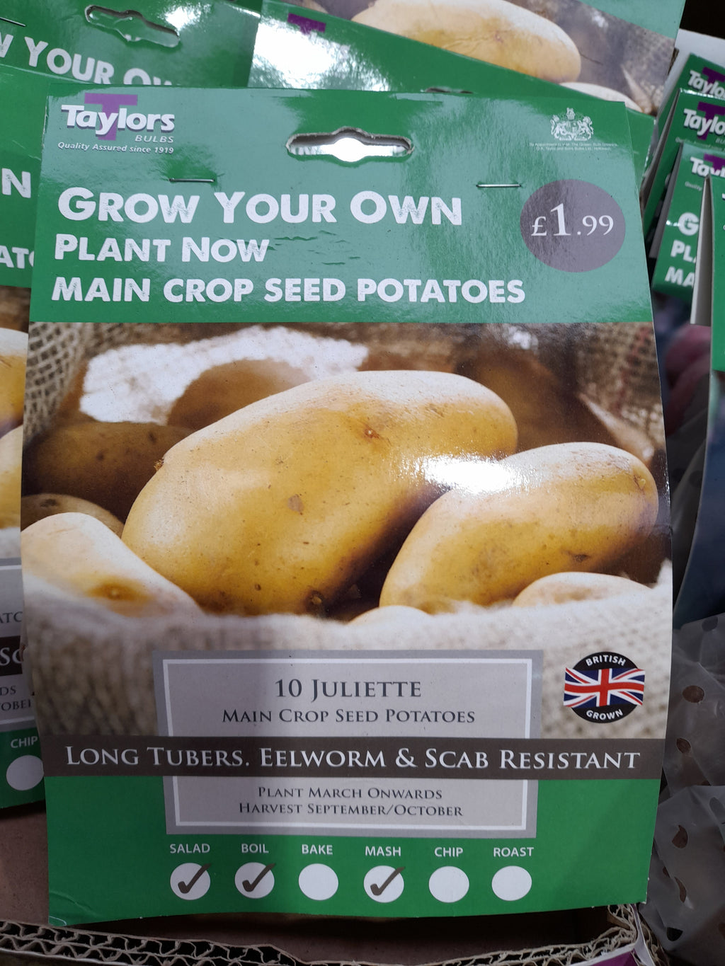 Juliette Seed Potatoes 10 Tuber Pack