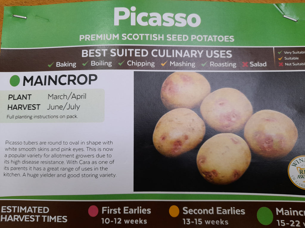 Picasso Seed Potatoes 2kg