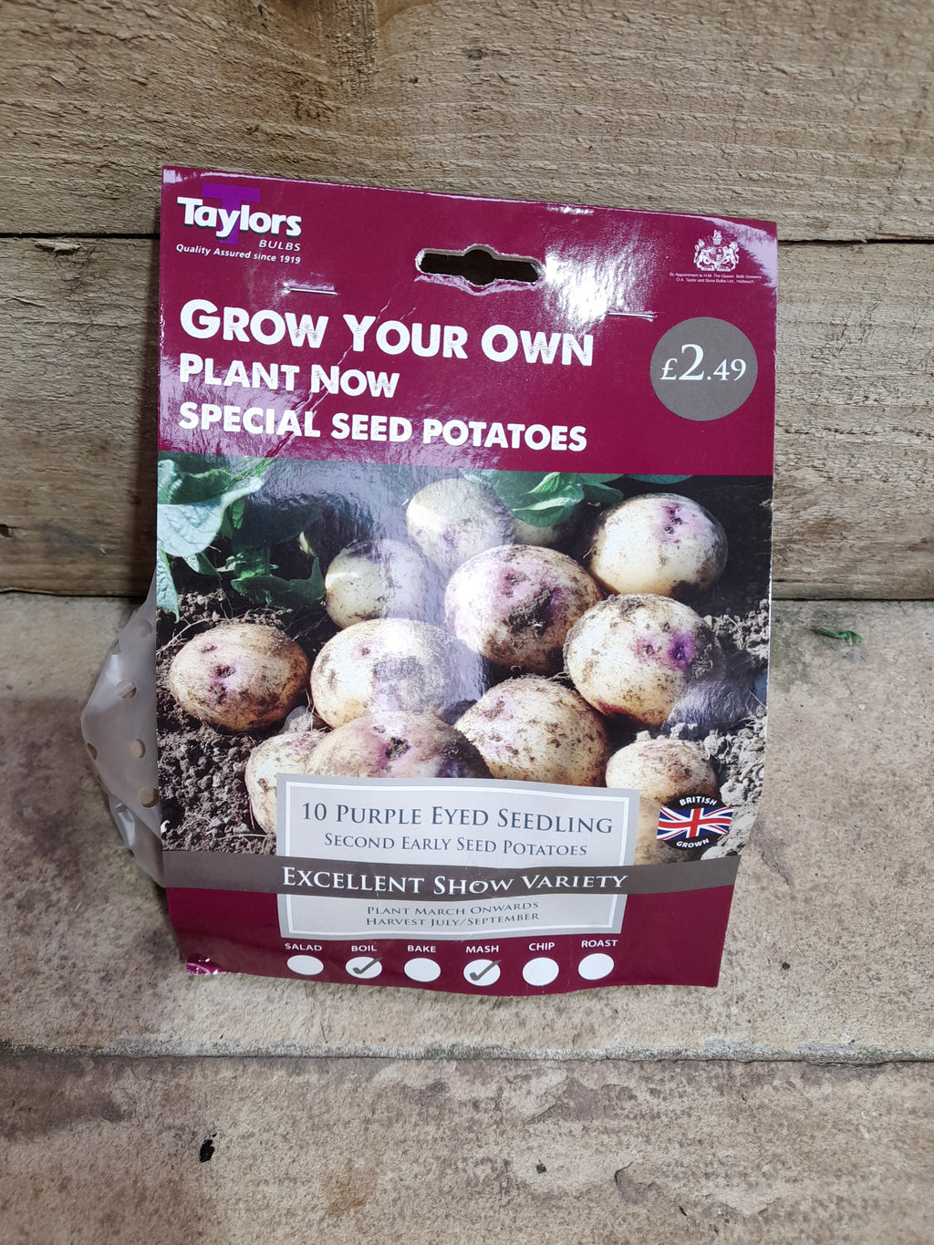 Purple Eyed Seedling Seed Potatoes 10 Tuber Pack