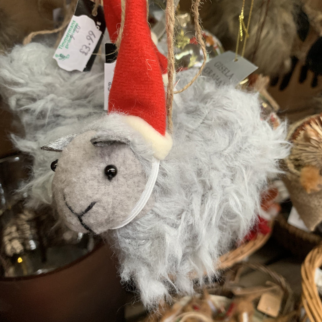 GREY SHEEP IN HAT