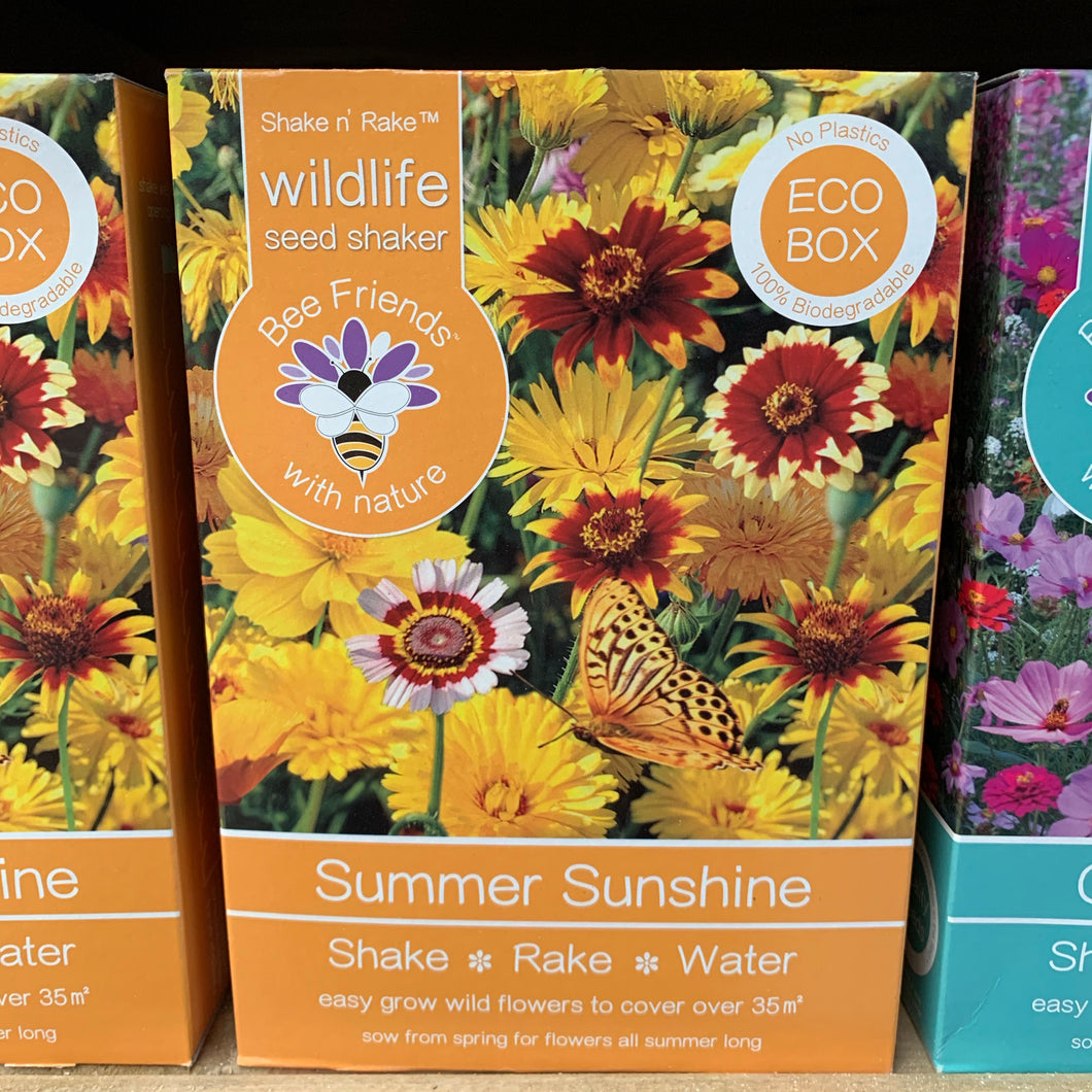 Summer Sunshine Seed Shaker Pack