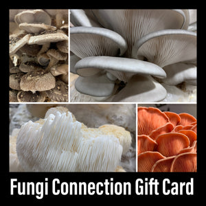 The Fungi Connection Gift Card