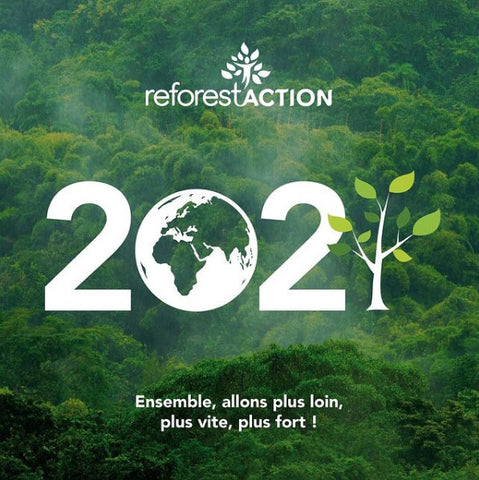 reforest action reforestation planter arbres