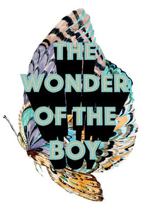 The Wonder of the Boy A4 print