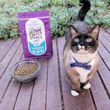 Stella & Chewy's Raw Coated Kibble Wild Caught Salmon Recipe (2 Sizes: 5lb/10lb)
