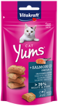 Vitakraft Cat Yums Salmon Cat Treats