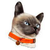 Meow Merchants Kitty Career Series - Baller Dream Collar