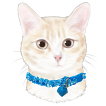 Meow Merchants Kawaii Series - Dolphin Collar