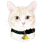 Meow Merchants Kitty Career Series - Cinema Staff Collar