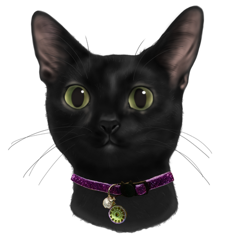 Meow Merchants Mystical Series - Astrology Collar