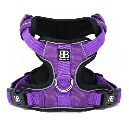 Dog Harness - Do's and Don'ts