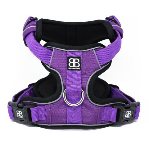 Dog Harnesses - Overview and Common Types