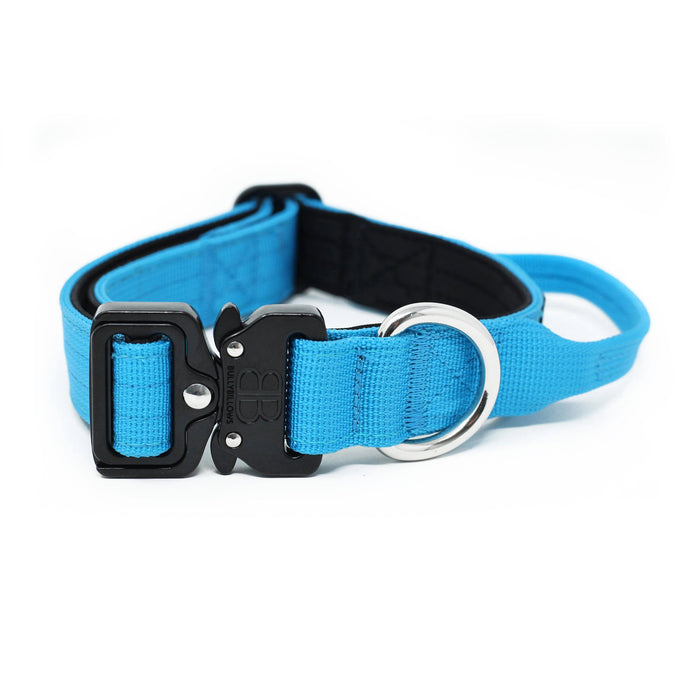 2.5cm Combat Dog Collar - Light Blue v2.0