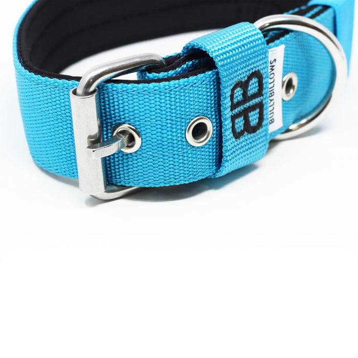 4cm Nylon Dog Collar - Light Blue v2.0