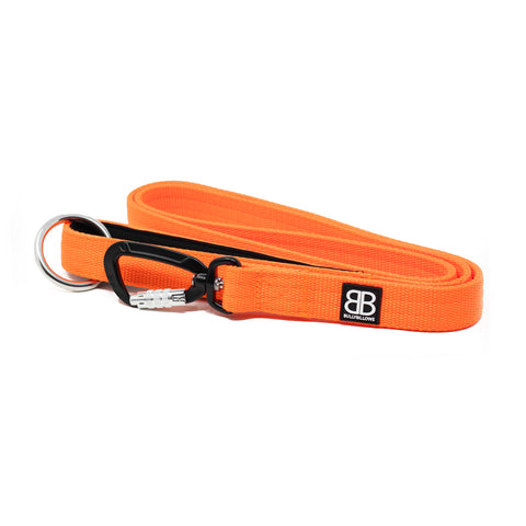 Nylon Sporting Dog Lead - Orange