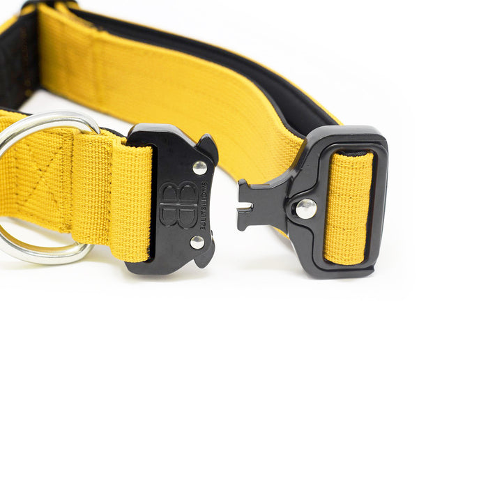 4cm Combat Dog Collar - NO HANDLE - Mustard Yellow v2.0