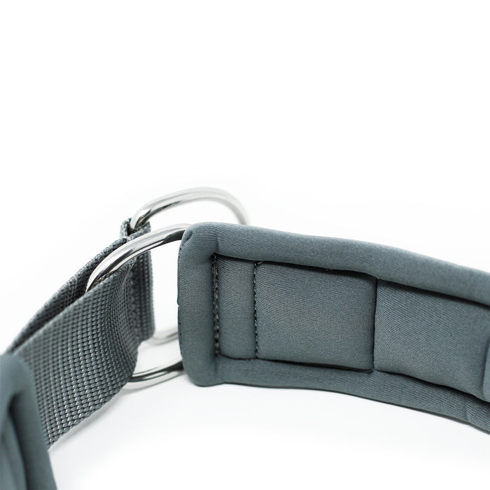 5cm RR - Metal Grey Dog Collar