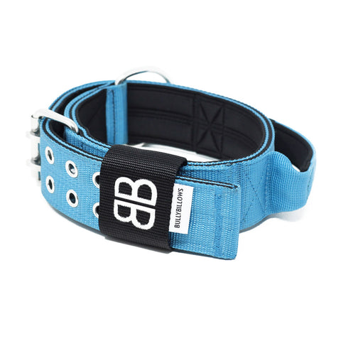 5cm Sporting Dog Collar - WITH HANDLE - Light Blue