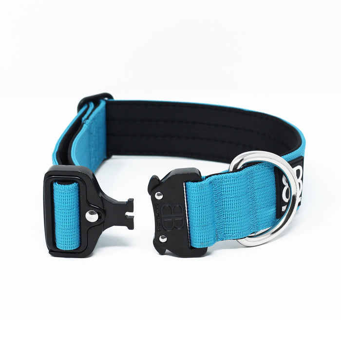 4cm Combat Dog Collar - NO HANDLE - Light Blue v2.0