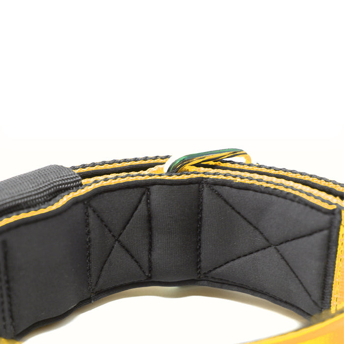 5cm Sporting Collar - Mustard Yellow