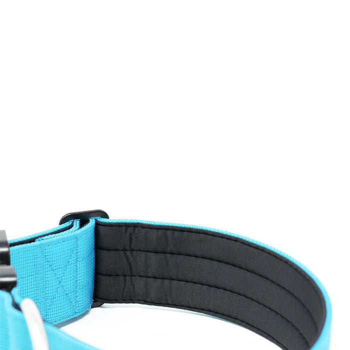 5cm Combat Collar - NO HANDLE - Light Blue v2.0