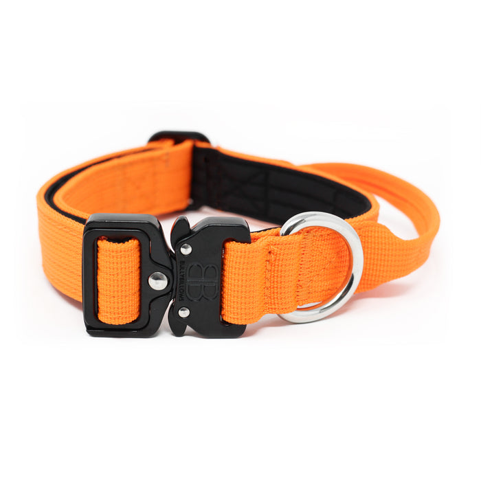 2.5cm Combat Dog Collar - Orange v2.0