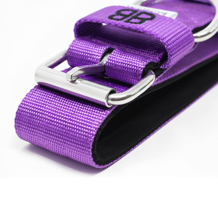 5cm Nylon Dog Collar - Purple v2.0